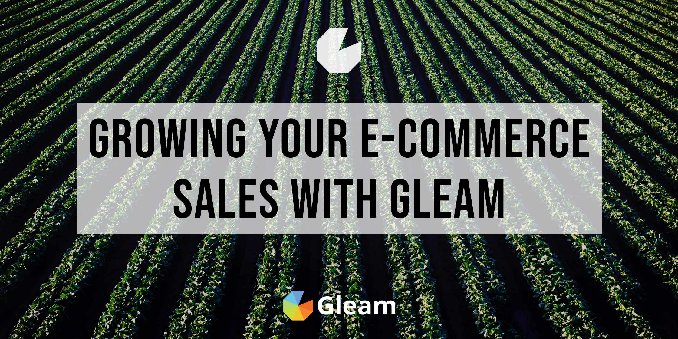 10 Ways To Grow Your E-Commerce Sales Using Gleam